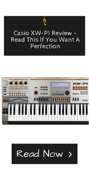 Casio XW-P1 Review - Read This If You Want A Perfection