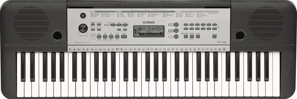 Yamaha YPT 255 Review